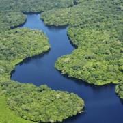 noticia-biomas-brasil-foto-de-fotopedia