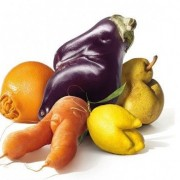 noticia-camanha-de-frutas