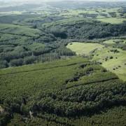 car-cadastro-ambiental-rural-site