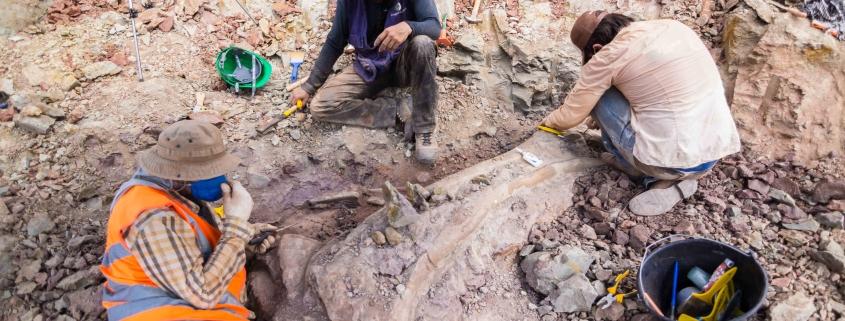 Achado de dinossauro em Davinópolis